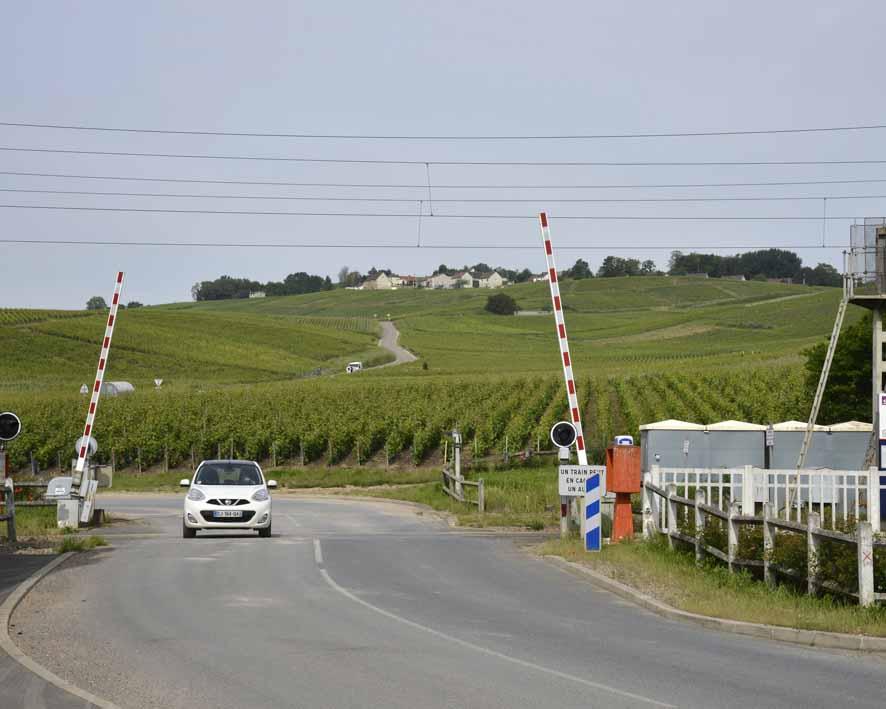 vue sur Mutigny depuis Avenay