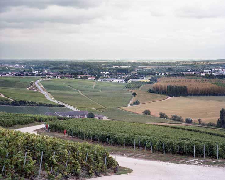 Dizy, la vallée de la Marne au lieudit Le Pont Malo