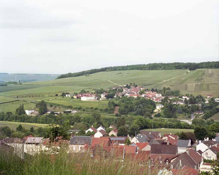 Chatillon-sur-Marne, vue sur Montigny