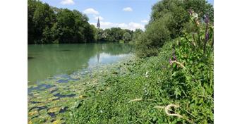 Aménagement de la zone humide du Nambly à Tours-sur-Marne