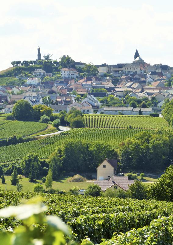 Châtillon-sur-Marne ©PNRMR
