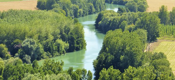 Rivière Marne ©PNRMR