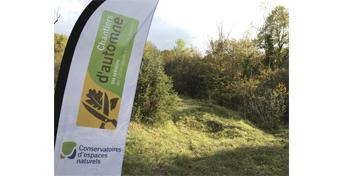 Nettoyage des pelouses sèches de Champillon