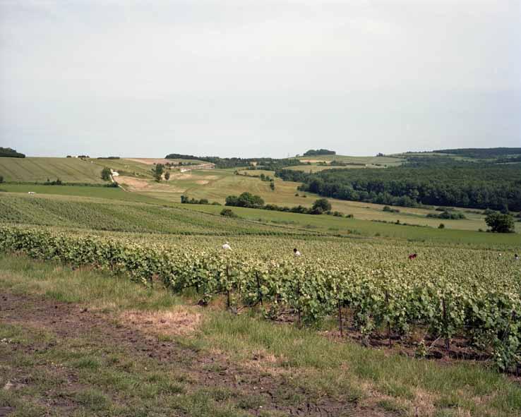 Saint-Euphraise