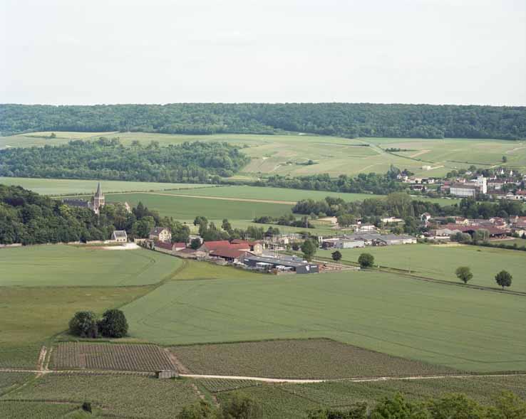 Chatillon-sur-Marne, le prieuré de Binson