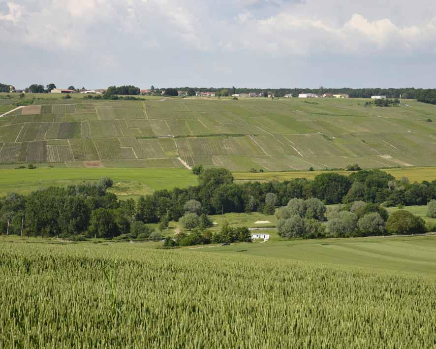 vue sur La Neuville-aux-Larris