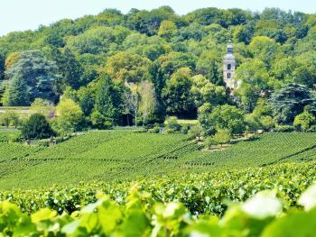 Abbaye Saint-Pierre à Hautvillers ©PNRMR