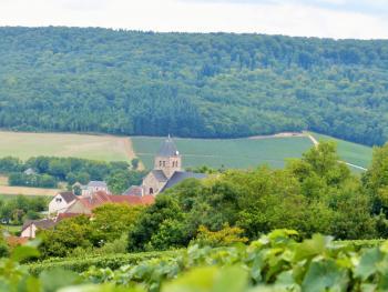 Fleury-la-Rivière ©PNRMR
